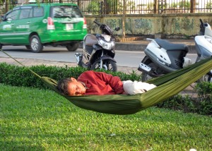 Napping by the Road180_5317
