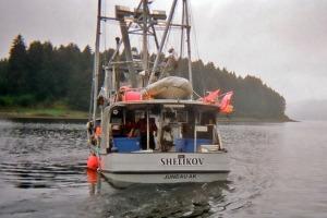 The Shelikov